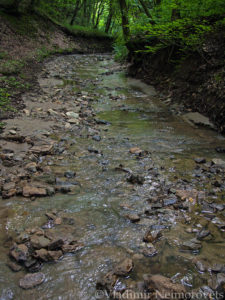 stream near the settlement of Ilsky, Krasnodar Territory